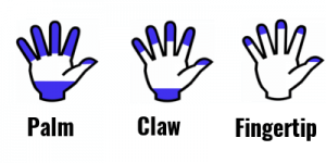 palm-claw-fingertip